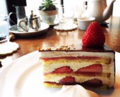 IRODORIショートケーキ