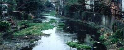 昔の源兵衛川