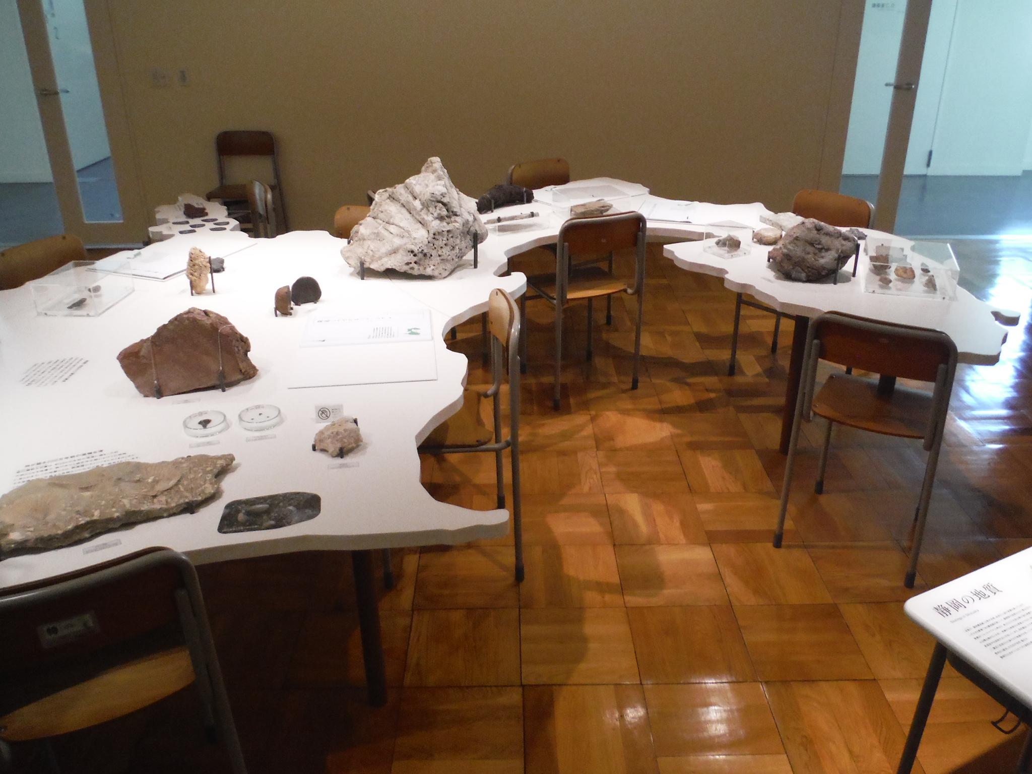 地球環境史ミュージアム